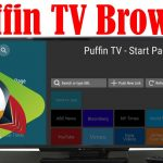 Puffin TV browser for Android TV